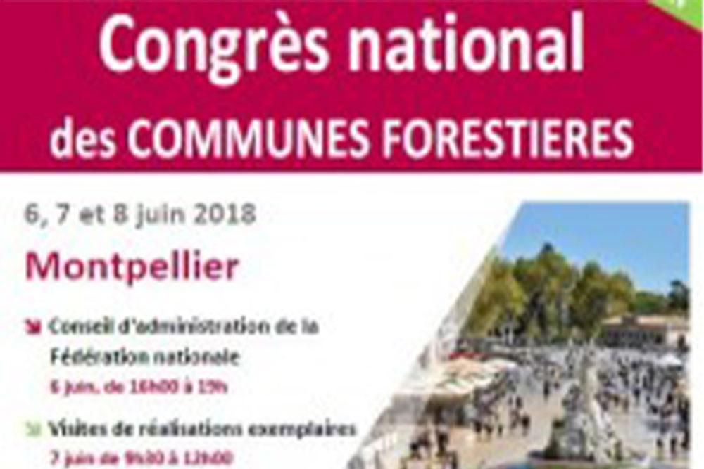 Congrès national des communes forestières, Sylv'ACCTES témoigne