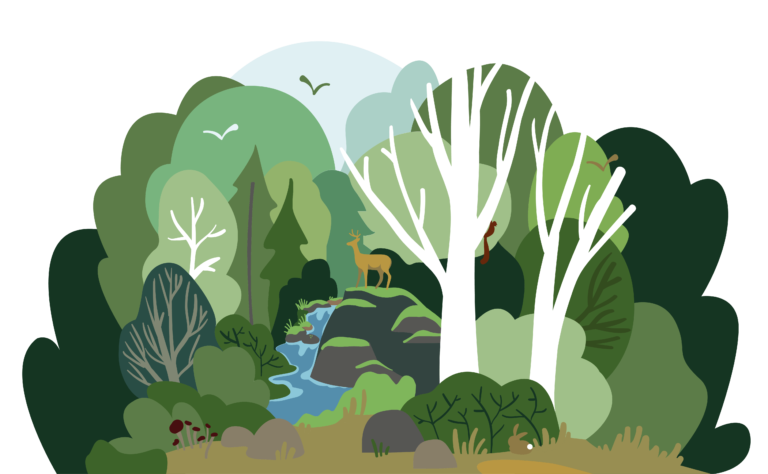 Sylv'ACCTES lance la campagne «J'aime ma forêt»
